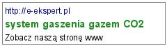 system gaszenia gazem CO2